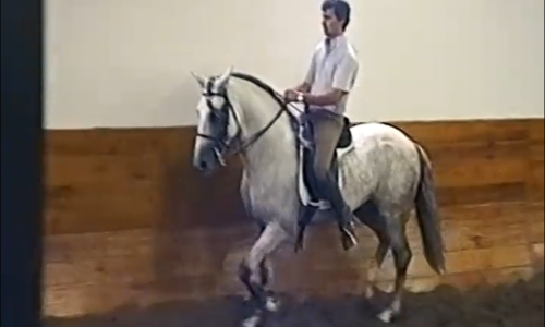 Lesson 07 – Lateral Work in Trot, Part 2