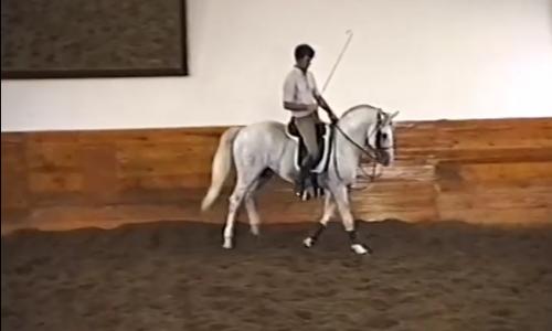 Lesson 13 – Riding Nabão